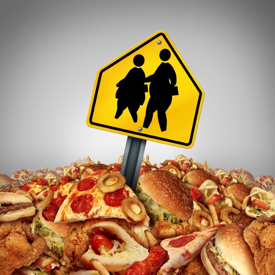 Большие порции еды - причина ожирения