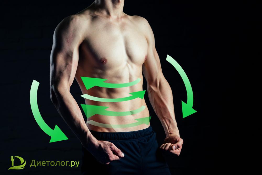 метаболизм увеличивается, а не уменьшается